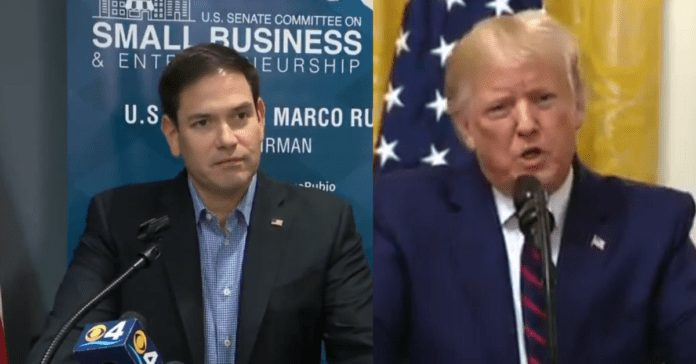 Marco Rubio Mocks Media Over Trump China Hysteria: Not Real Request, Played Media Like Violin
