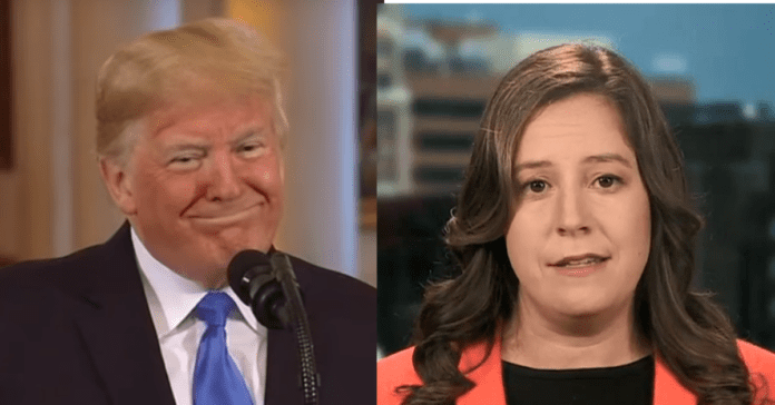 Trump Makes His Moves, Names Elise Stefanik as New York Campaign Chair In Smart Move For 2020
