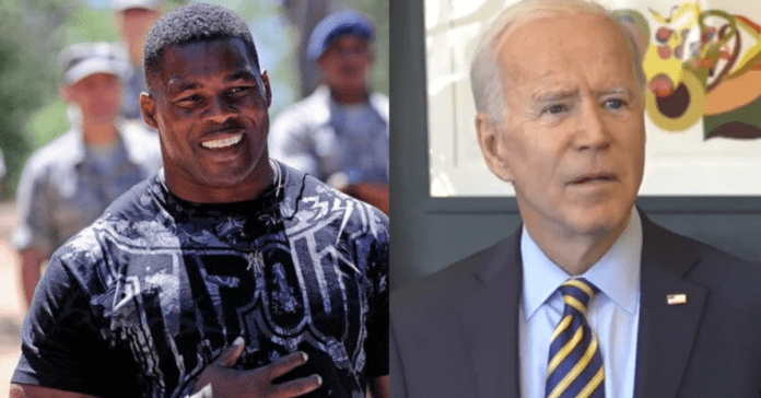 Herschel Walker Sends Joe Biden Scurrying To Ash Heap Of History Over Offensive Comments About Black Voters