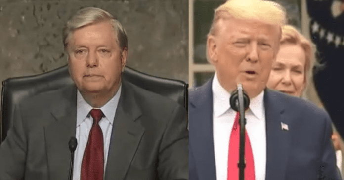 Lindsey Graham Breaks With Trump On Key Immigration Plan After He Wins South Carolina Primary