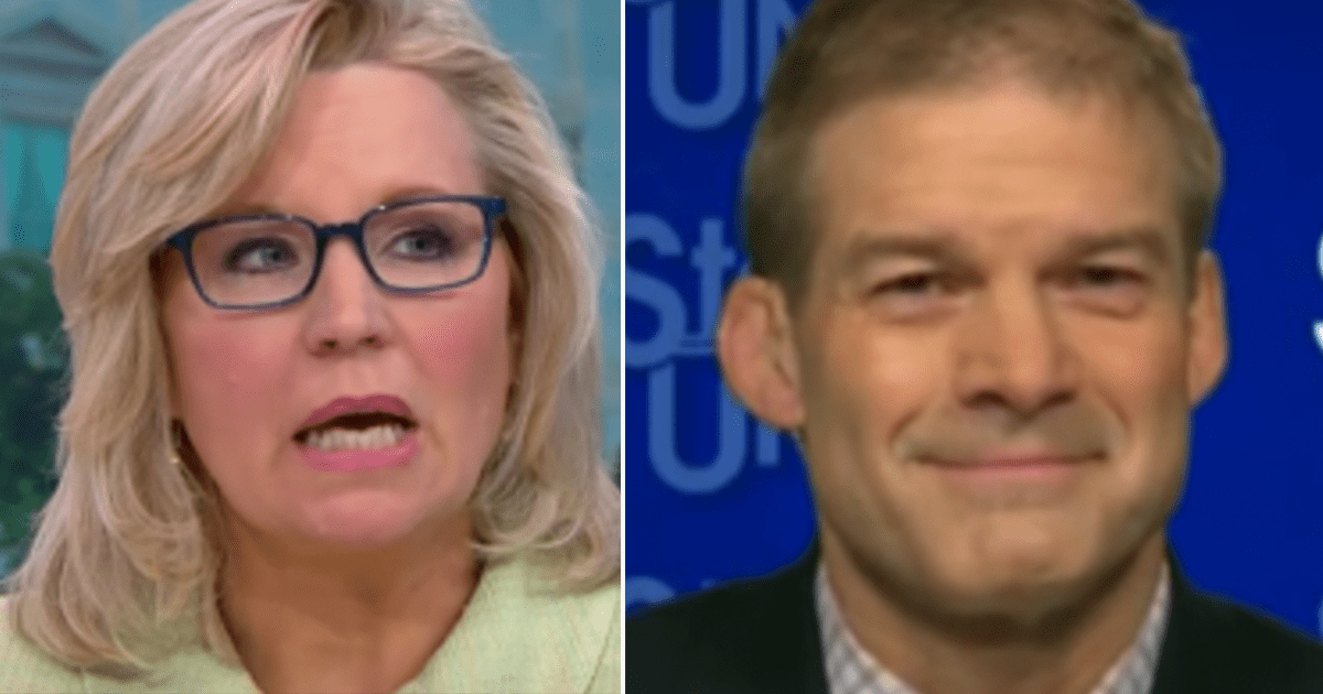 "Jordan says ""the votes are there"" to oust Liz Cheney from key GOP role ""you can't have a Republican conference chair reciting Democrat talking points'"