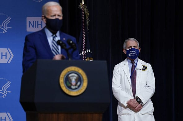 pressure is mounting for biden to fire dr  fauci