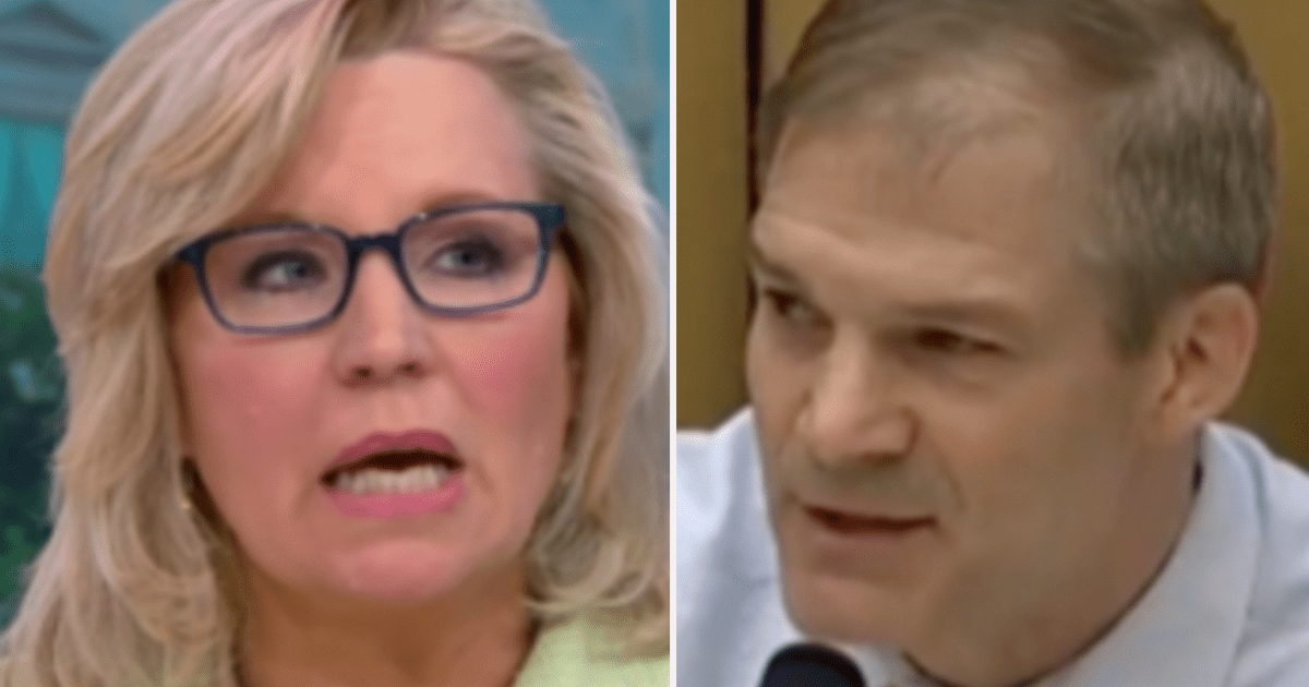 """Liz Cheney reportedly told Jim Jordan """"Get away from me. You f---ing did this,"""" when he offered help Jan. 6th"""